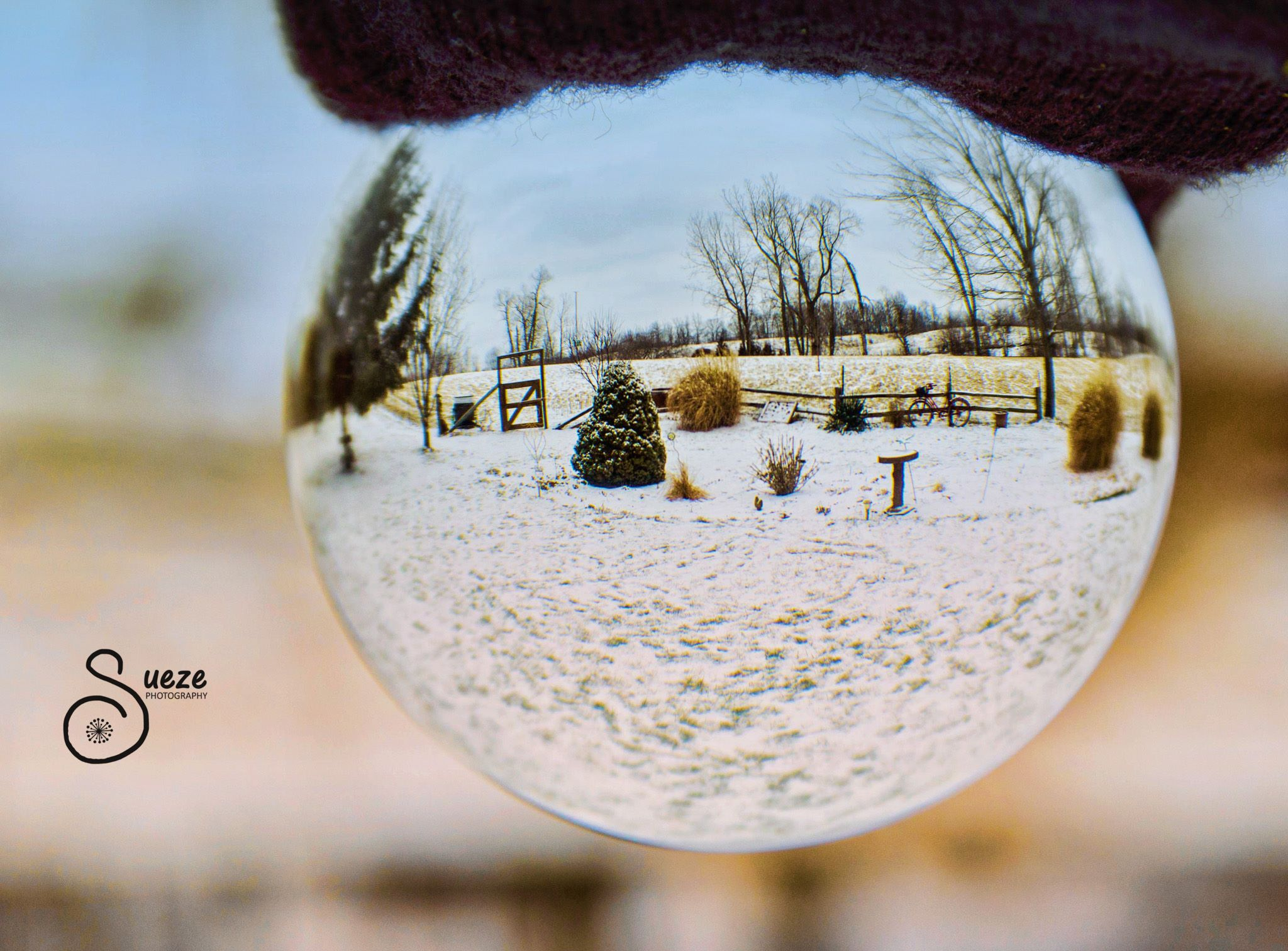 1491310_10202174959969034_1502206049_o Fun Photo Activity Using a Crystal Ball Activities Assignments Photography Tips Photoshop Tips & Tutorials