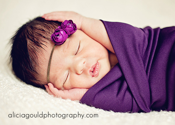5009637015_b03219dec7_o So You Booked a Newborn Photography Session. Now What? Guest Bloggers Photography Tips