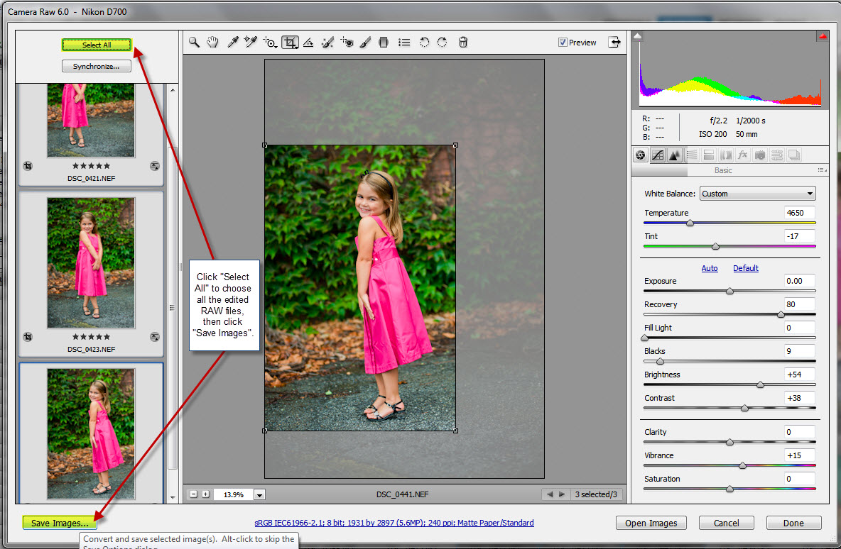 5_b Speed Up Your Workflow - Batch Editing, Presets, and Resizing/Sharpening Guest Bloggers Photoshop Tips & Tutorials