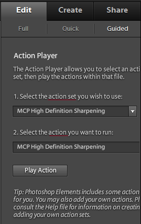 Action-Player-2 Actions in Elements: Installing in Effects Palette vs. Action Player Photoshop Actions Photoshop Tips & Tutorials