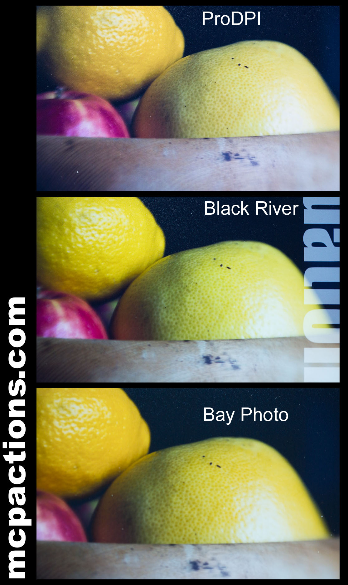 Bay-photo-orange-lemon The Pro Photo Lab VS Consumer Photo Lab Battle Business Tips Guest Bloggers