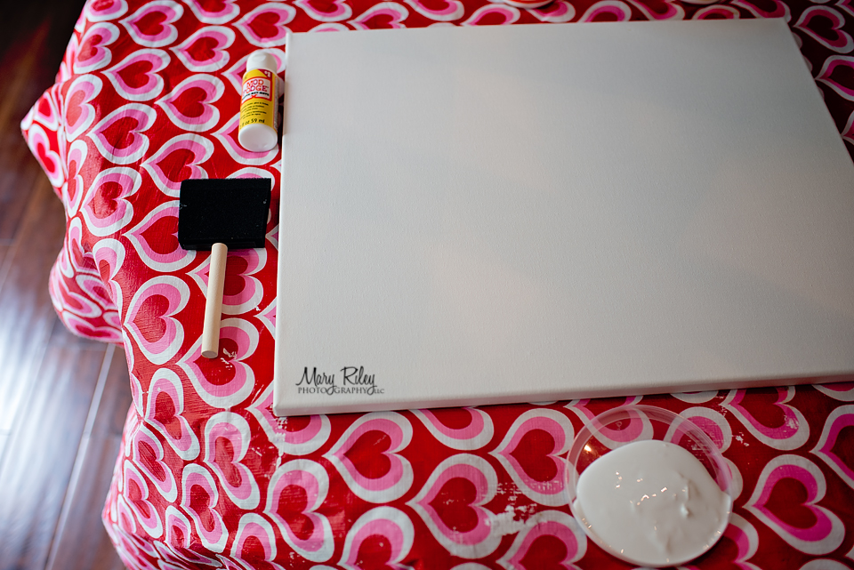 Canvas-Wall-8-Mary-Riley-Photography-Wentzville-Missouri How to Make a DIY Photo Canvas on a Budget Activities Guest Bloggers