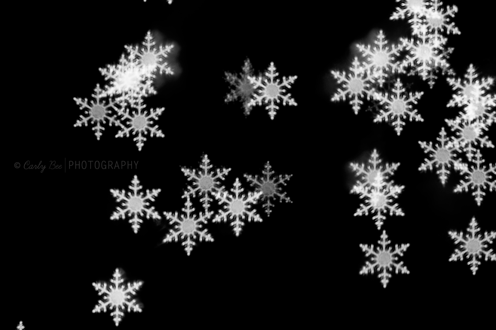 Carly-Bee-Photography-Snowflake-Bokeh1.0 Merry Christmas: Enjoy a FREE Snowflake Bokeh Brush for Photoshop Free Editing Tools Photo Sharing & Inspiration