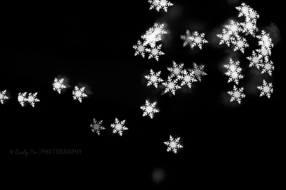 Carly-Bee-Photography-Snowflake-Bokeh2 Merry Christmas: Enjoy a FREE Snowflake Bokeh Brush for Photoshop Free Editing Tools Photo Sharing & Inspiration
