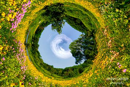 CircleReversedweb