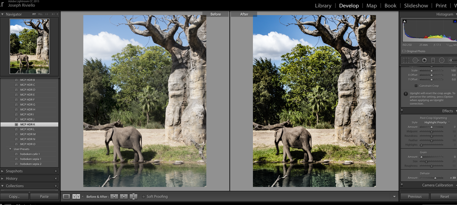 Elephant-before2 HDR in Lightroom - How to Get the HDR Look You Want Uncategorized