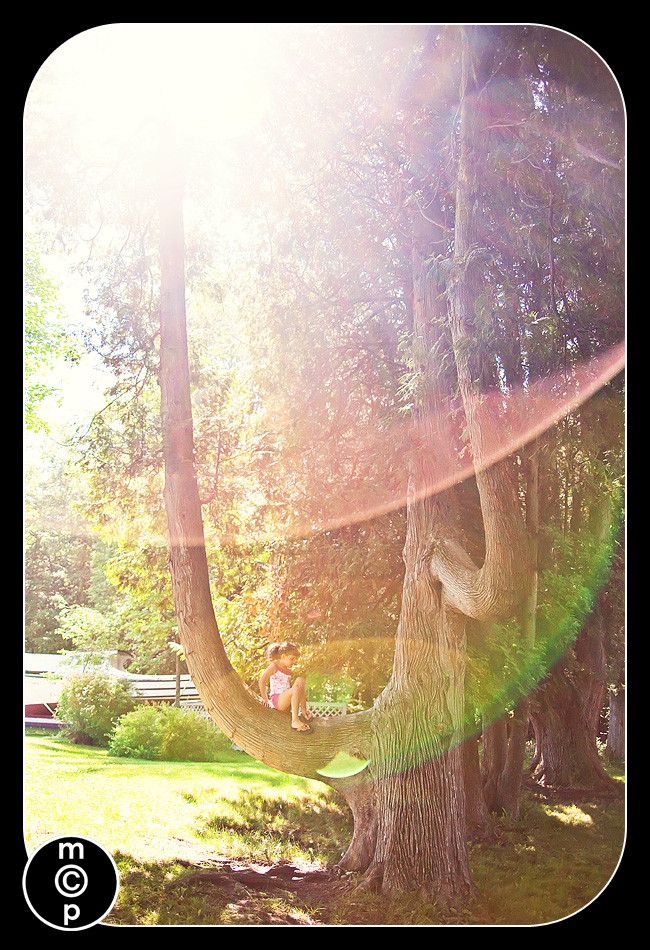 Homestead-1181 Colors of Light ~ Red Green Blue ~ Sun Flare in Photography Assignments Photography Tips