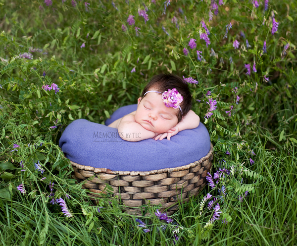 IMG_8988-basket1 Top 5 Secrets to Successfully Photographing Newborns Outdoors Photo Sharing & Inspiration Photography Tips