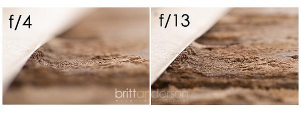 MCP-Macro-Photography-1 Macro Photography Basics: Get Amazing Closeup Photos Guest Bloggers Photography Tips