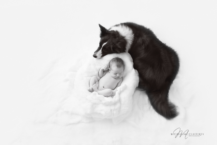 Newborn_Dog_BW_Edit_Raleigh_Photographer_McClafferty_Web-716x477