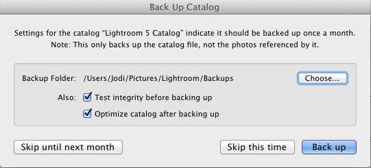 Screen-Shot-2014-04-03-at-8.56.35-AM 4 Ways To Avoid A Disaster If You Edit In Lightroom Lightroom Presets Lightroom Tutorials