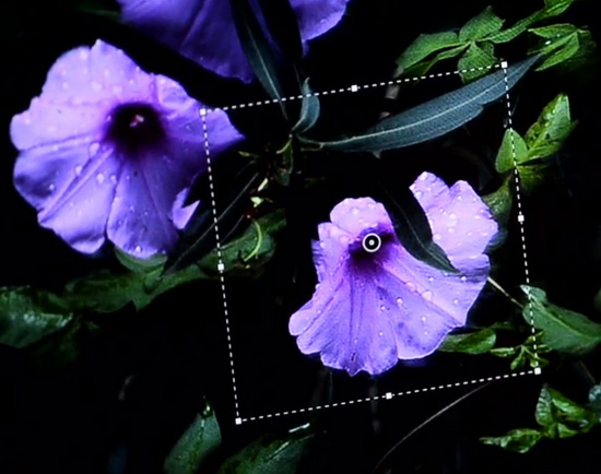 adobe-photoshop-deblurring-filter-teaser Adobe Photoshop deblurring filter teased ahead of MAX 2013 News and Reviews