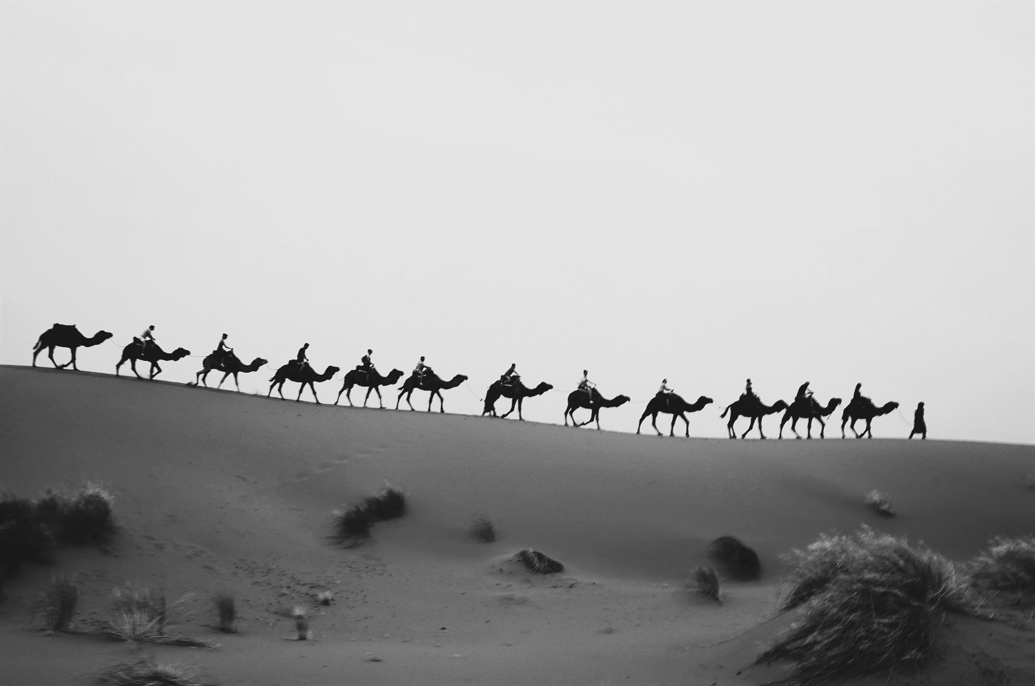 brilliant-bw-base-and-chic How to Take Powerful Travel Photos Photography Tips