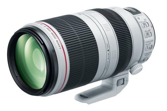 Canon 100-400mm f/4.5-5.6L