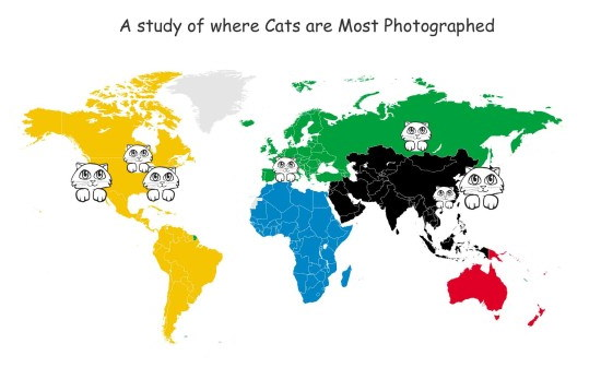 cat-study All April Fools' Day jokes in the photography industry Fun