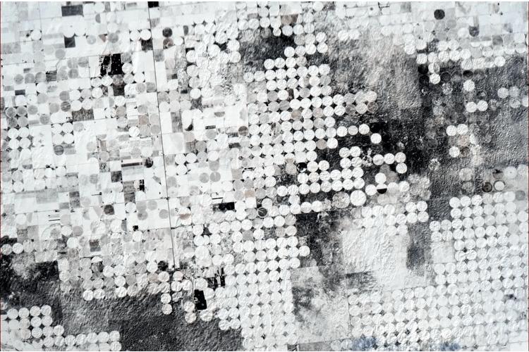 confetti-farms