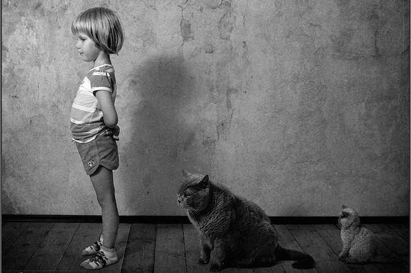 Daughter and cats standing in line