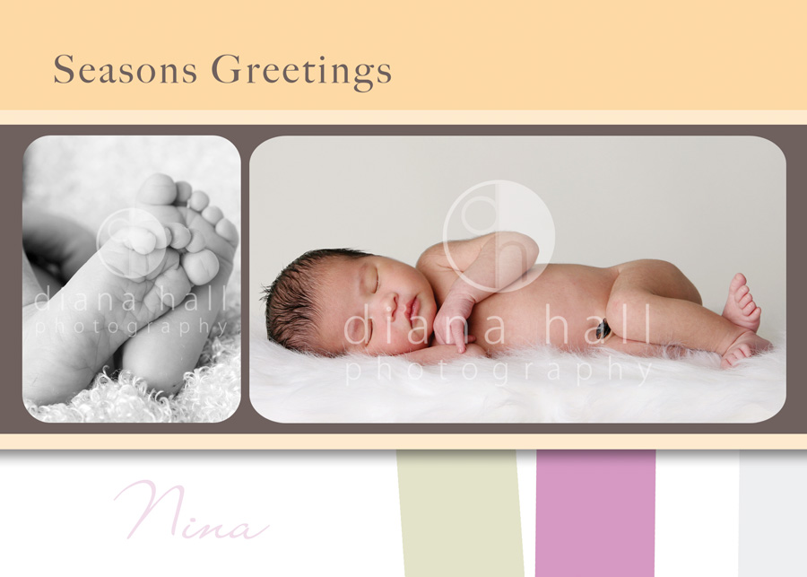 diana-hall-template Freebie - a Season's Greetings Template from Diana Hall Free Editing Tools