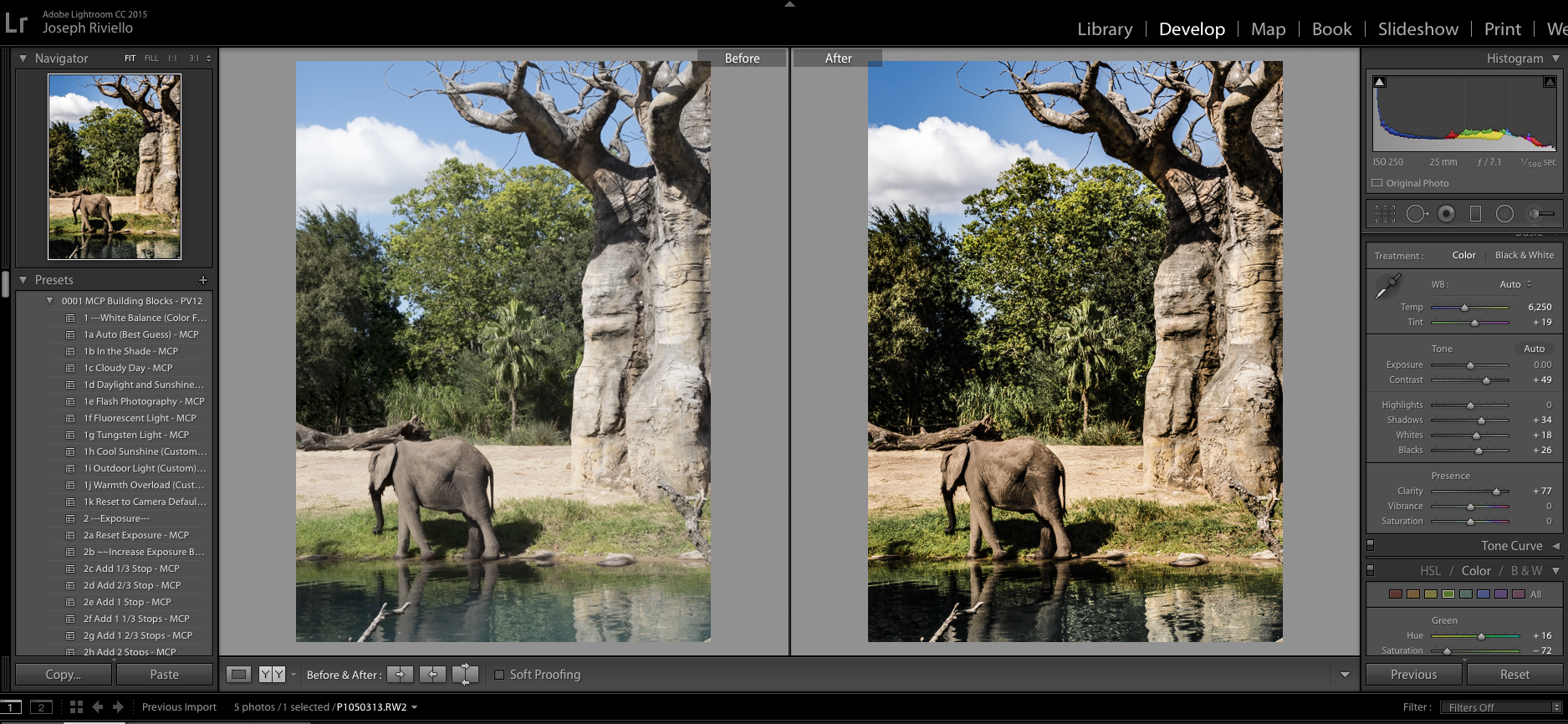 elephant-before3 HDR in Lightroom - How to Get the HDR Look You Want Uncategorized