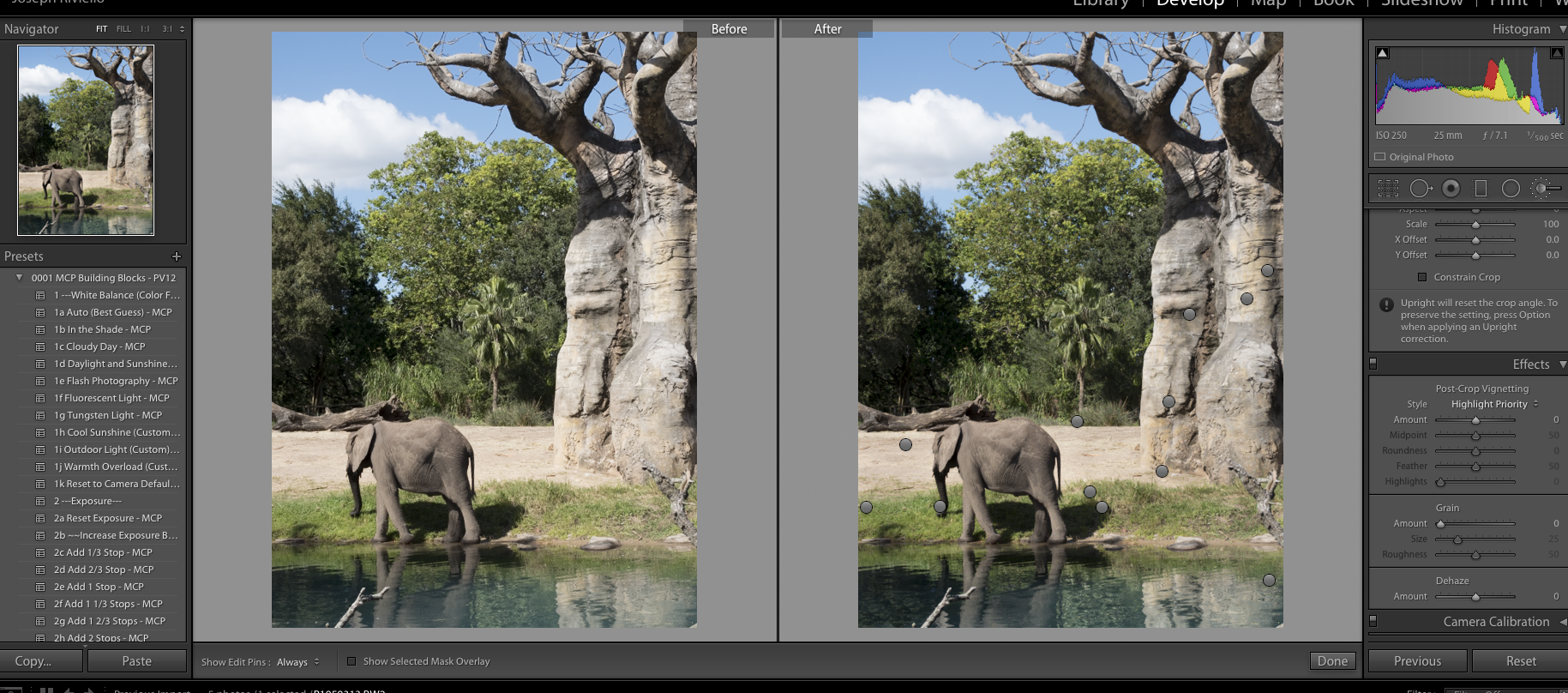 elephantbefore1 HDR in Lightroom - How to Get the HDR Look You Want Uncategorized