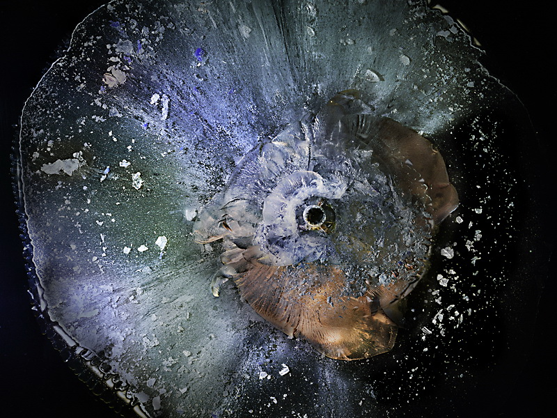 """five-seven """"The Big Bang"""" shows the beauty of plexiglass stopping bullets Exposure"""
