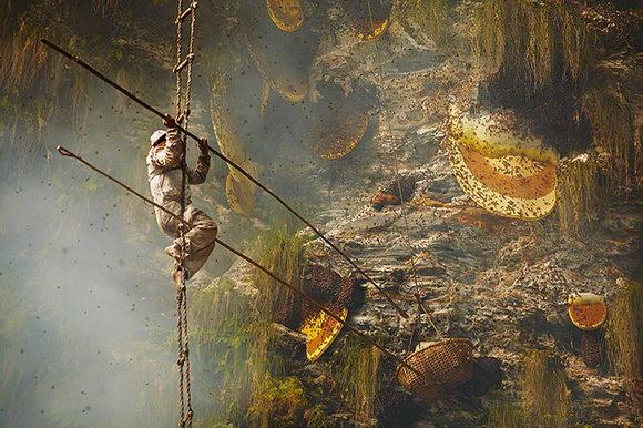 Gurung honey hunting