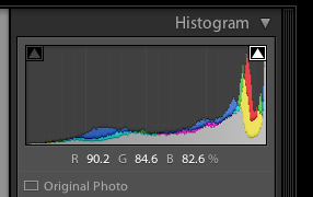 histogram-2 3 Ways to Identify and Reduce Blown Highlights in Lightroom Lightroom Tutorials
