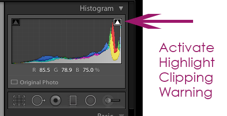 histogram 3 Ways to Identify and Reduce Blown Highlights in Lightroom Lightroom Tutorials