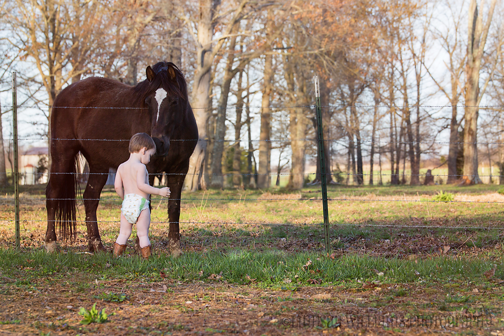 horse-and-boots Stop Following the Rules of Photography to Start Capturing Photos You Love Guest Bloggers MCP Thoughts Photo Sharing & Inspiration Photography Tips