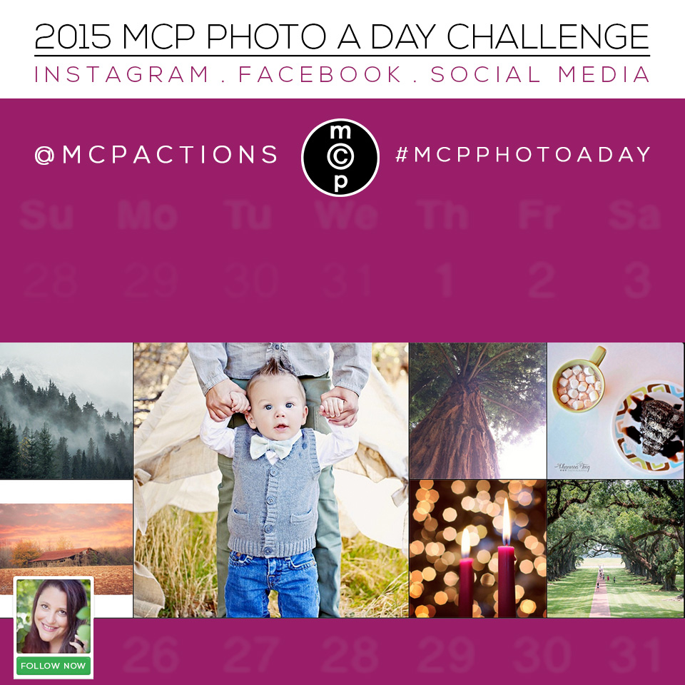 mcp-photo-a-day-2015 MCP Photo A Day Challenge for 2015 Activities Announcements Assignments