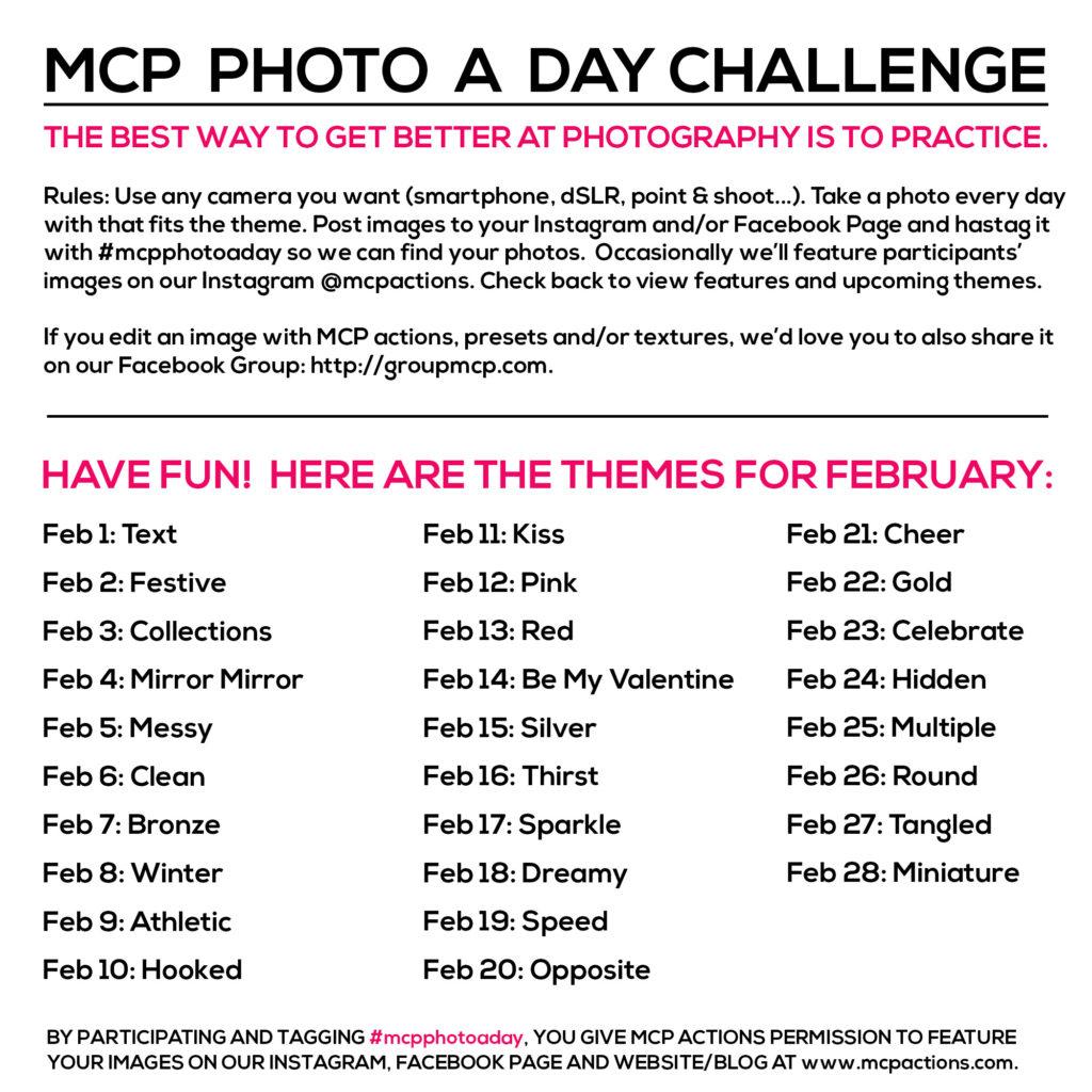 mcpphotoaday Feb