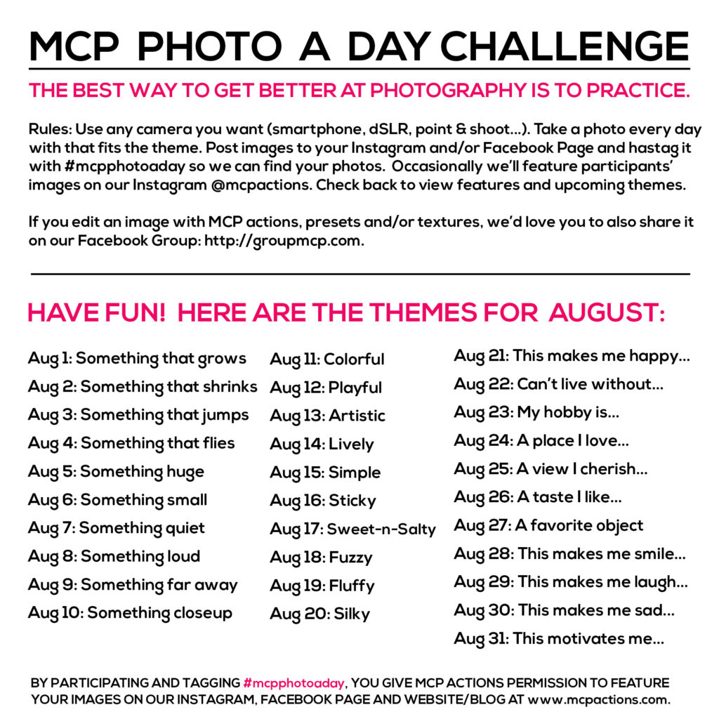 mcpphotoaday august