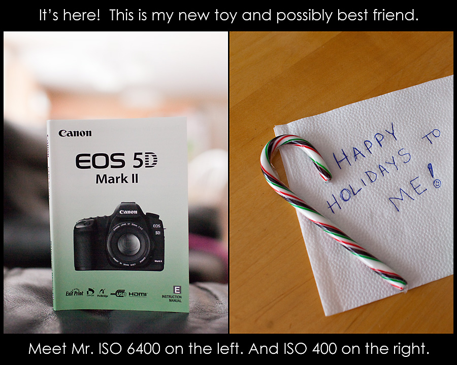new-toy Happy Holidays to Me! Yay!!! My 5D MKII has arrived... Announcements