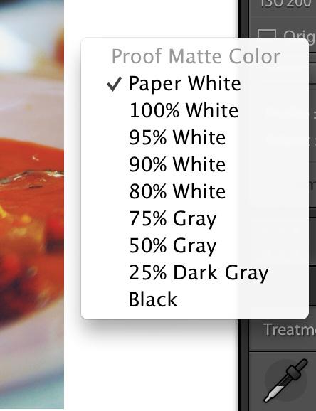 paper-types Soft Proofing in Lightroom Lightroom Tutorials