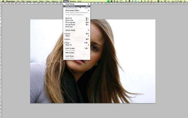 proofcolors-thumb Soft Proofing to Achieve Closely Matched Color Online and in Photoshop Guest Bloggers Photoshop Tips & Tutorials