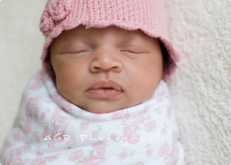 props-4 Newborn Photography Poses ~ Styles of Newborns Guest Bloggers Photography Tips
