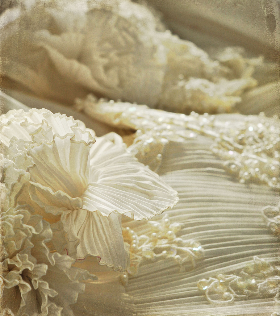 ruffles2 MCP Project 52 - Week 7 Wrap Up + Week 8 Theme Activities Assignments Photo Sharing & Inspiration Project 52