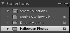 screen-shot-2009-10-26-at-93458-pm Lightroom Tutorial - Organizing Photos For Quick Editing Lightroom Tutorials Photoshop Tips & Tutorials