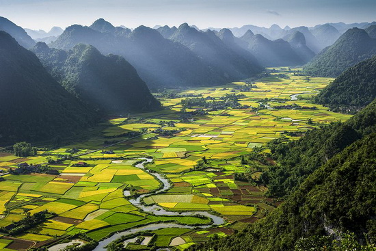 smithsonian-photo-contest-2012-rice-plots-vietnam Smithsonian Photo Contest 2012 finalists announced News and Reviews