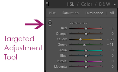 target-tool-2 3 Ways to Identify and Reduce Blown Highlights in Lightroom Lightroom Tutorials