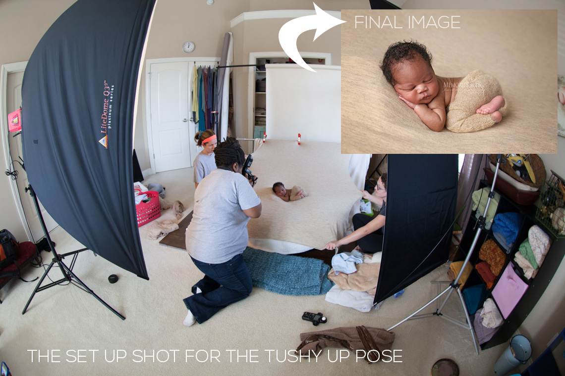 tushy-up-pull-back Learn to Master the Tushy-Up Newborn Pose: Free Sample Video Inside Announcements Photography Tips Video Tutorials Workshops