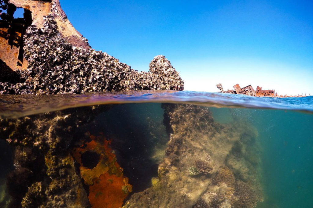 underwater-photo