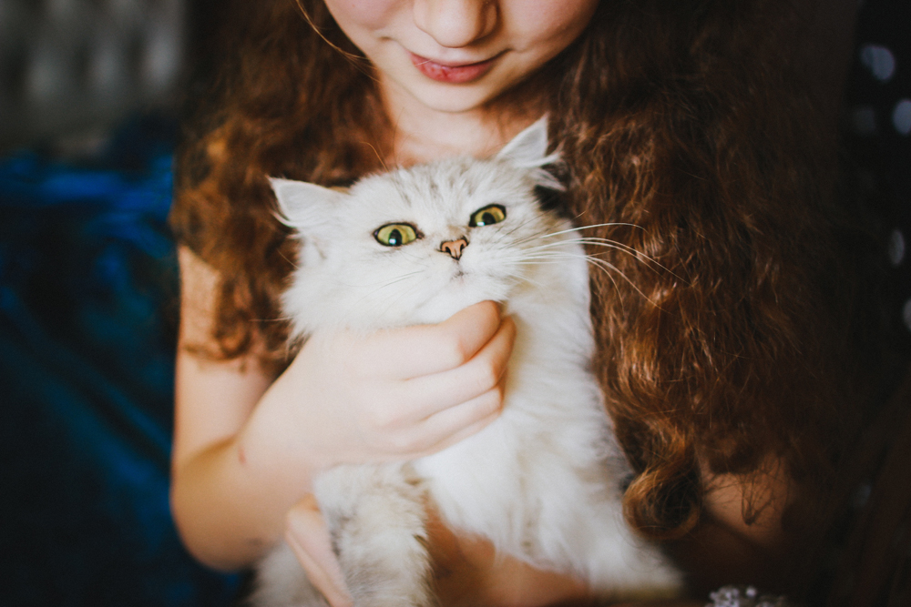 veronika-homchis-64124 How to Take Expressive Photos of Pets Photography Tips