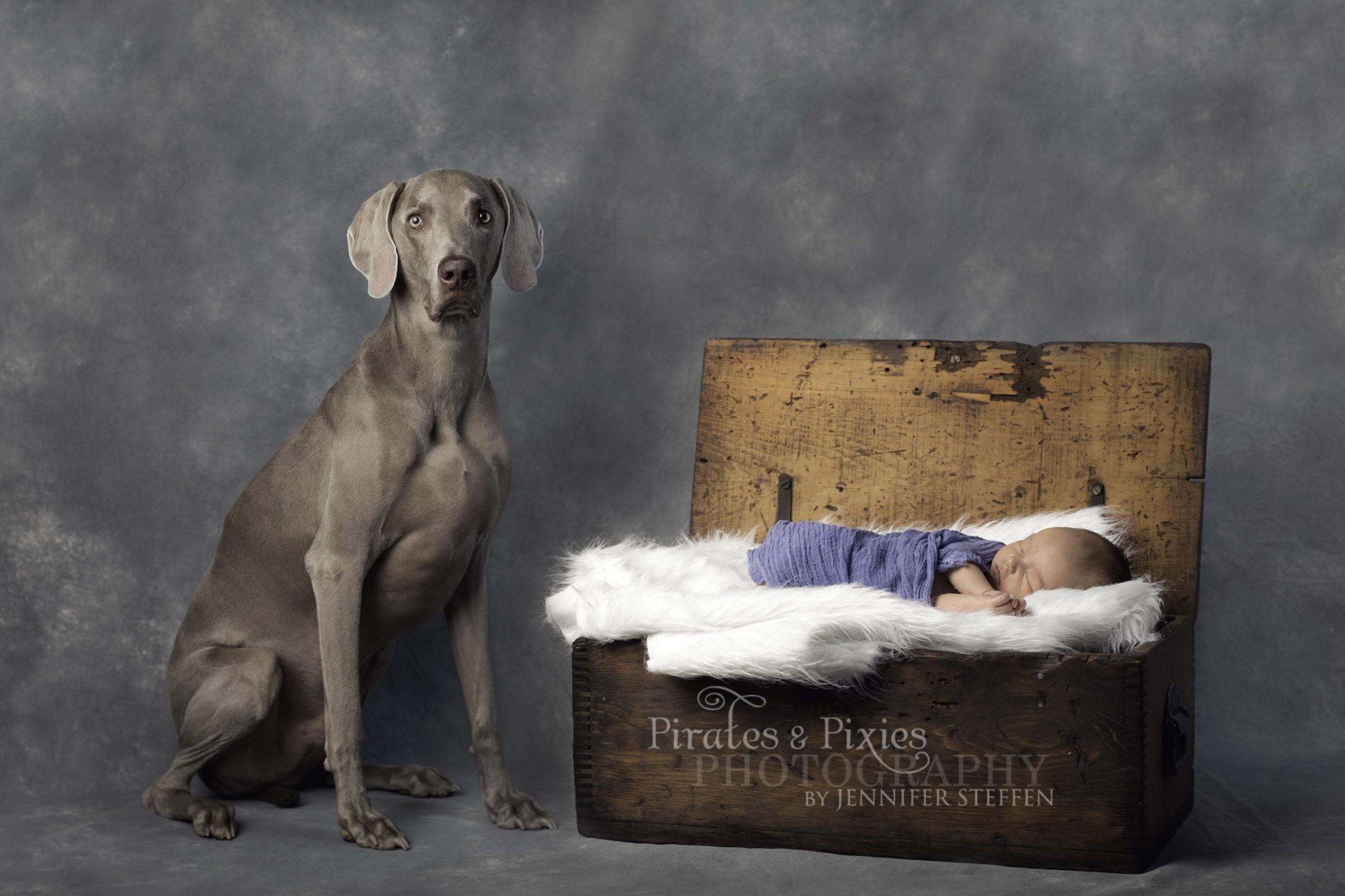 24x36-2-Edit-scaled A dog and his boy