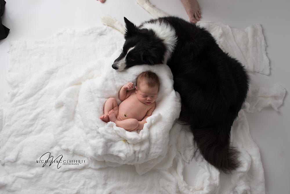 Newborn_Dog_SOOC_Raleigh_Photographer_McClafferty_Web Black and White Edit With MCP Newborn Necessities Actions