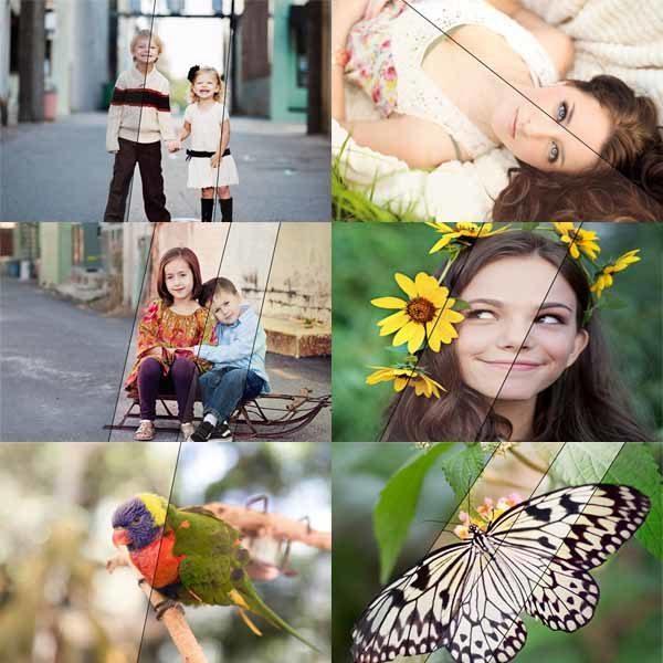 Four Seasons™ Photoshop Actions